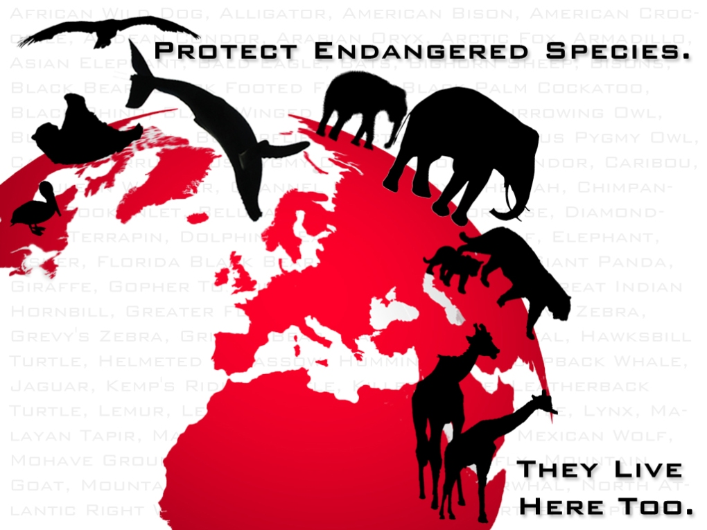 These species also have a right to live..