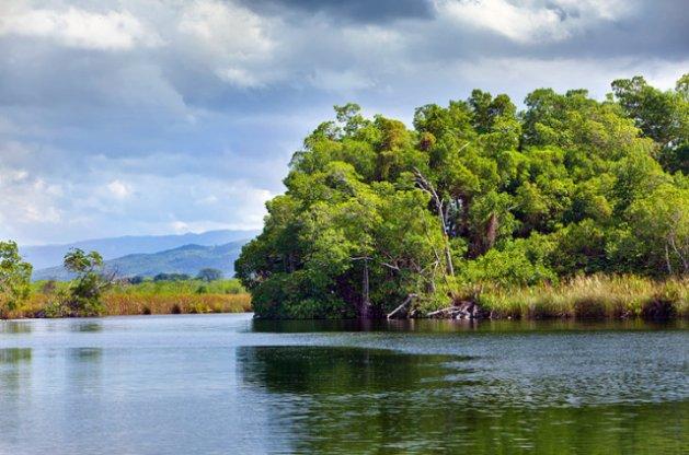 Black River Safari Boat Tour